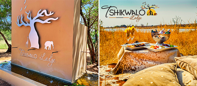 tshikwalo game lodge, game lodge, game reserve, accommodation, self catering, big 5, dinokeng, african accommodation, conference, wedding, venue, function venue, swimming pool, camping, caravanning, caravan accommodation, dinokeng